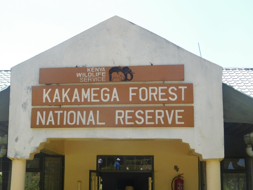 In the land of a culture soo lively you would want to adopt… #KakamegaCounty
