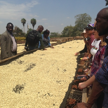 time for guests to learn about coffee farming