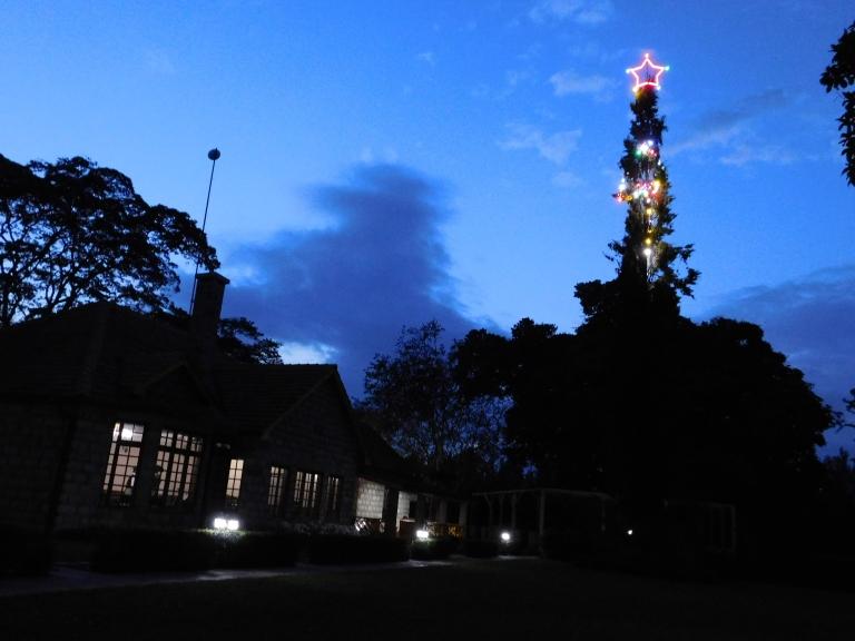 Christmas lighting at Le Pristine