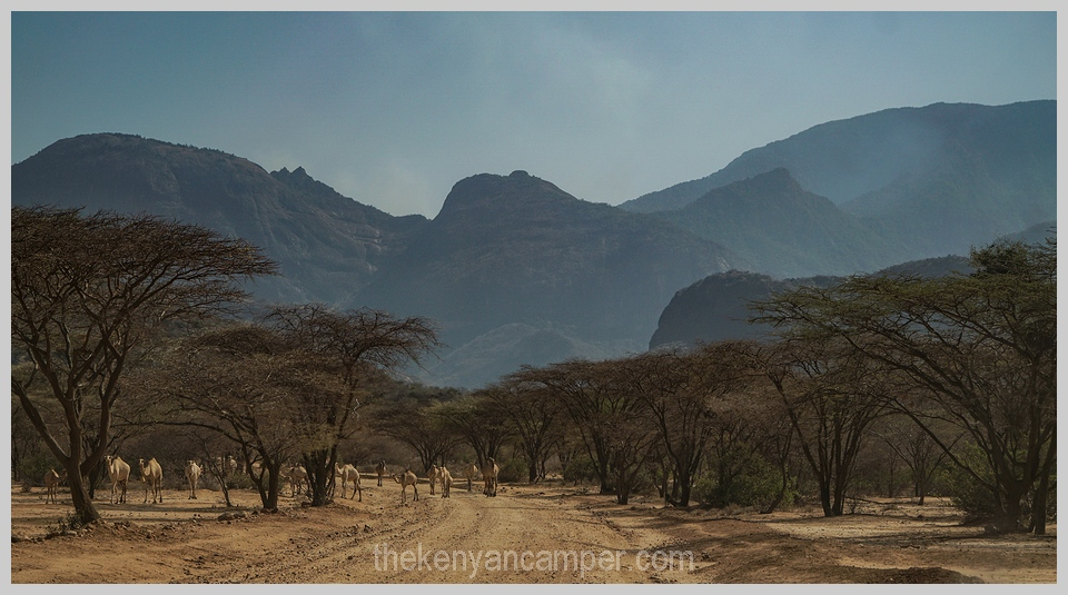 ngurunit-turkana-kalacha-marsabit-camping-kenya-002